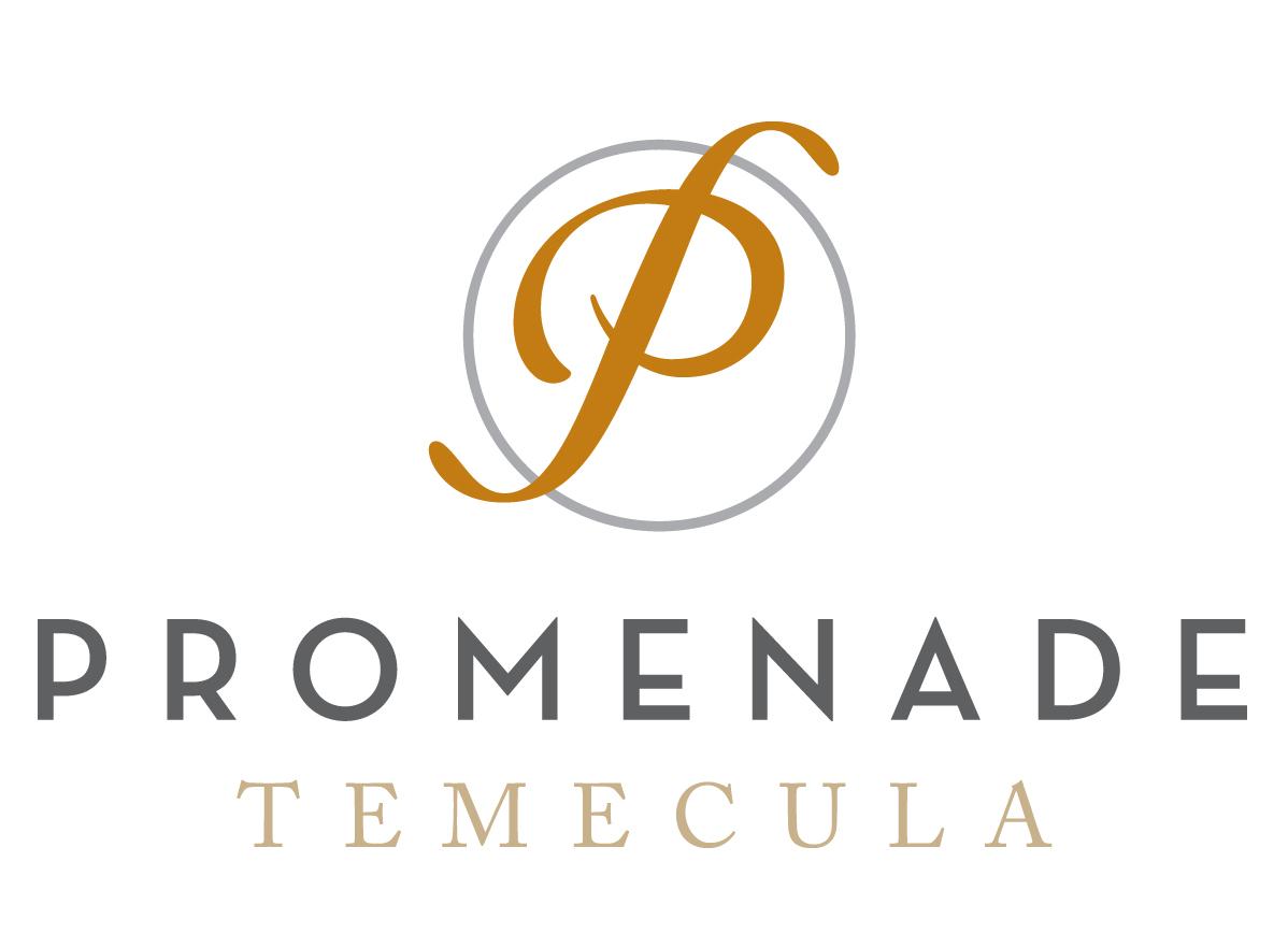 TEMECFinalLogo